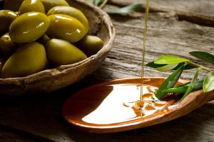 4 motive de ce imi hranesc cainele cu ulei de masline