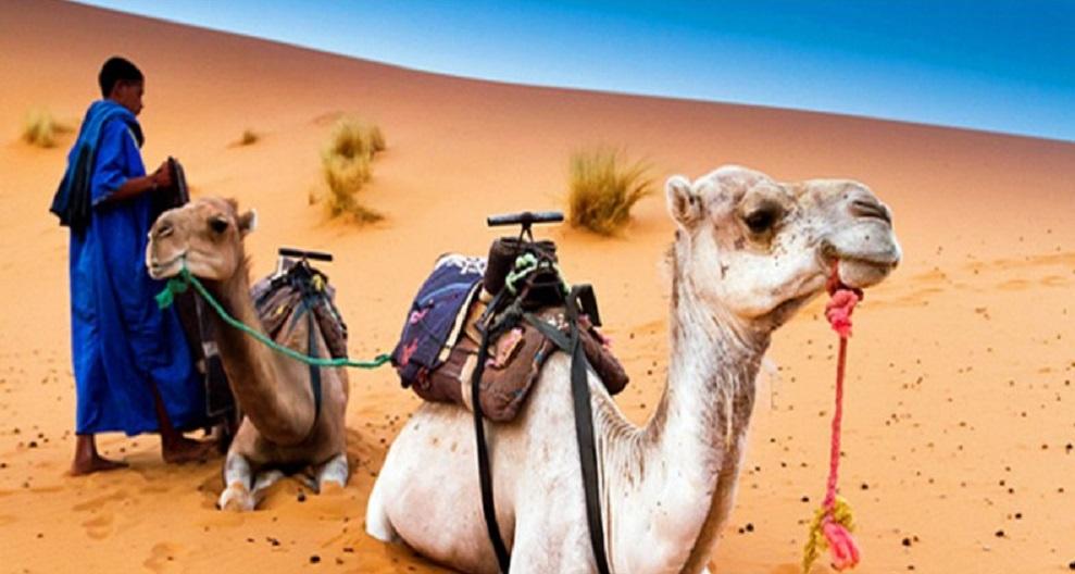 Destinatii de vis in Maroc