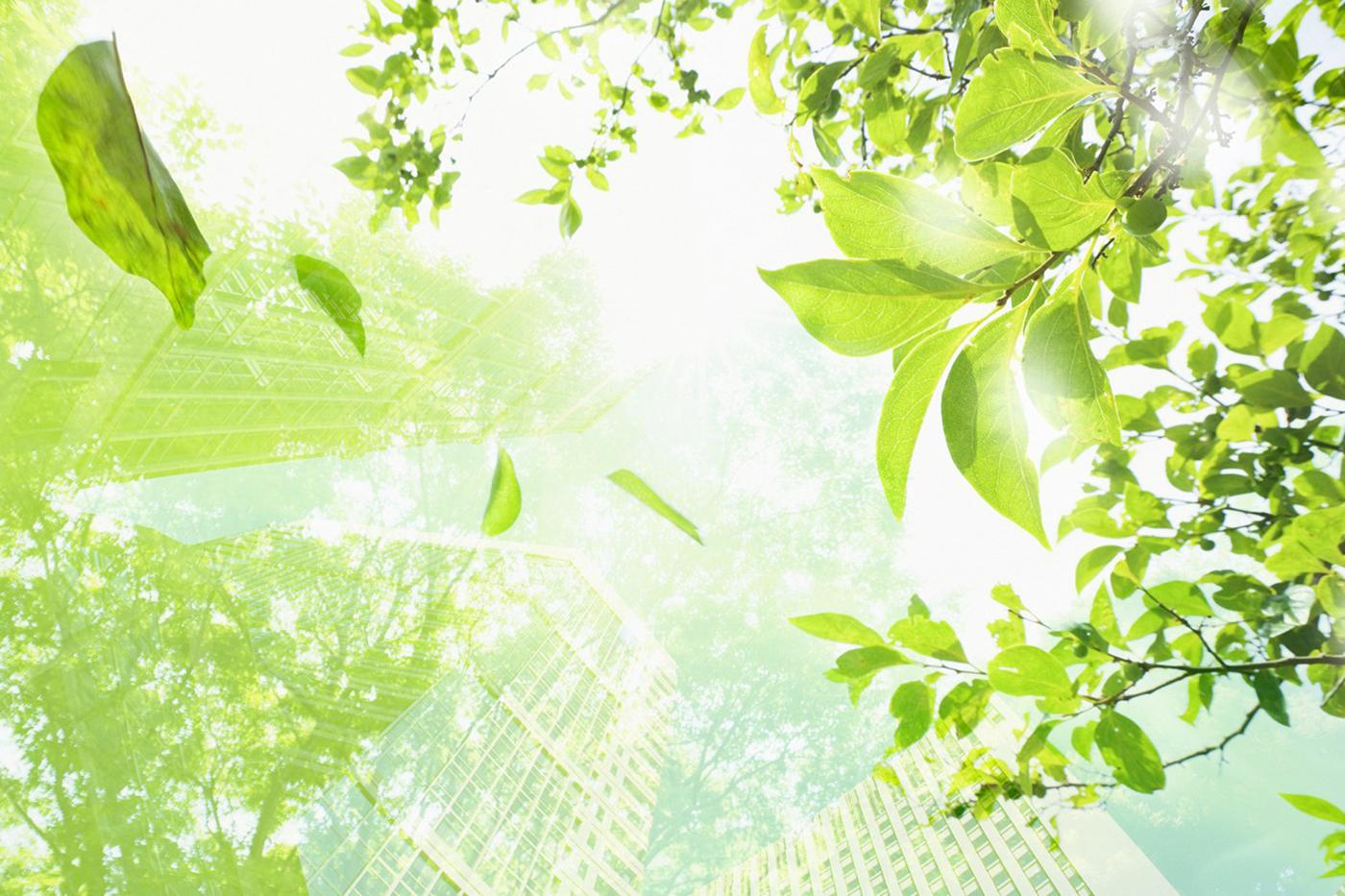 Avantajele ambalajelor ecologice pentru mediu